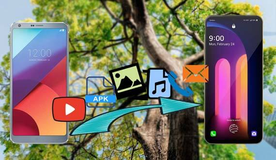 how to transfer data from lg to lg